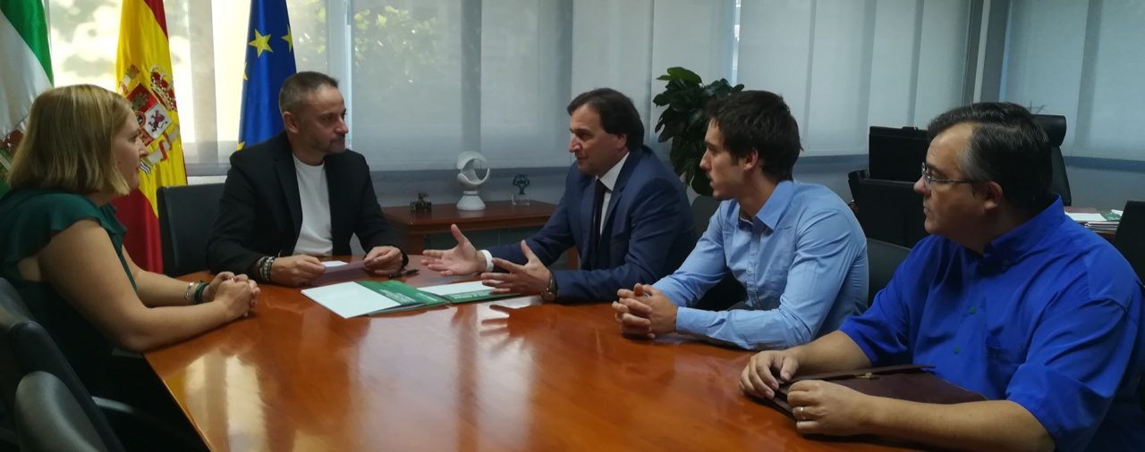 Junta authorizes the construction of three photovoltaic plants to X-Elio and Grupotec